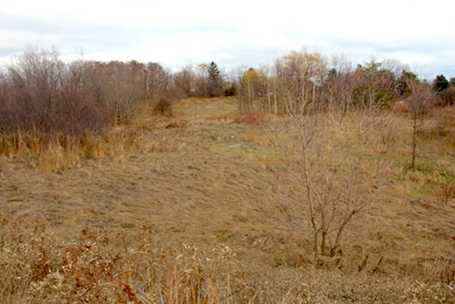 A barren field of land purchased by Options for Homes