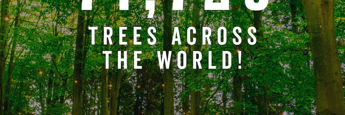 You planted 71,725 trees!