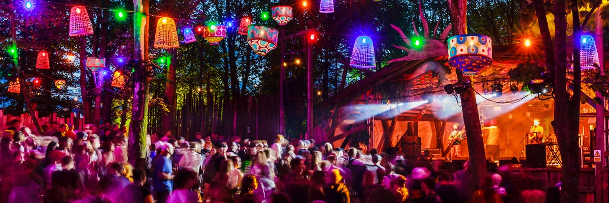 District Video: Forest Parties Part 1 🌳 | Reggae Roots and Sound System Culture