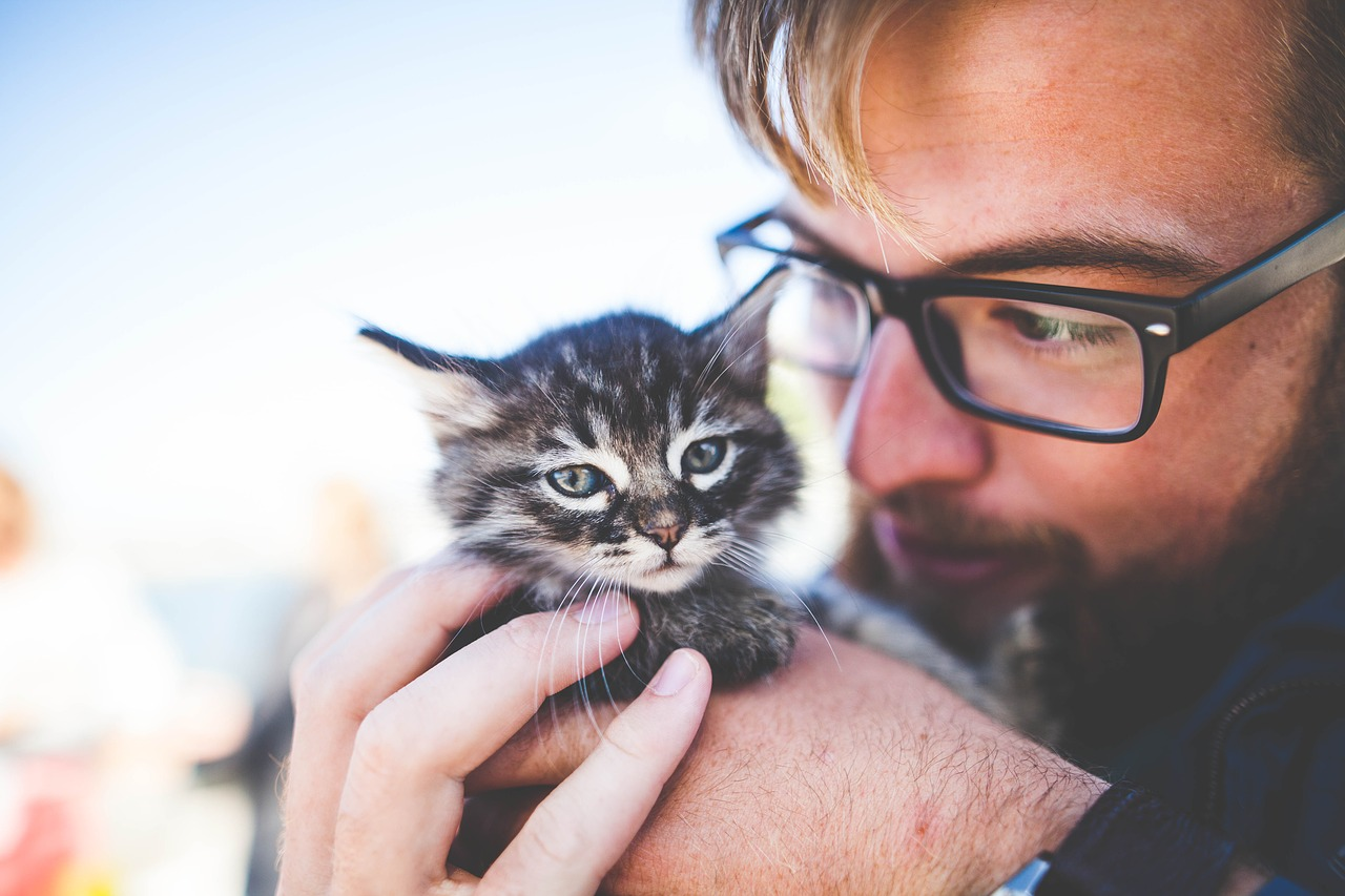 man and kitten|at the vet|woman and dog