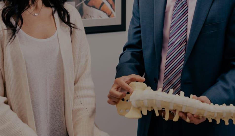 Spine Anatomy