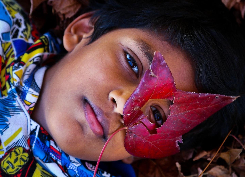 Krish Choudhry, 'Amongst the leaves', Moorebank, age 11.