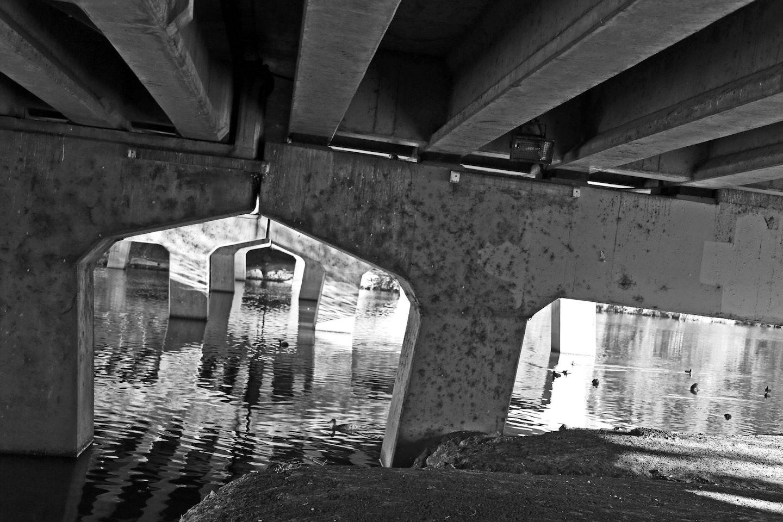Lochlainn Melville Ryan, 'Life under the Bridge', Parramatta River, age 10.