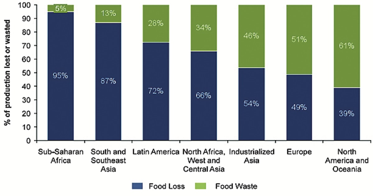 Fig. 2 – FVCs losses and wastes by world region