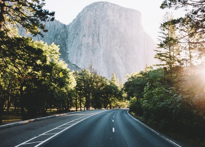 A photo of black asphalt road between trees during daytime