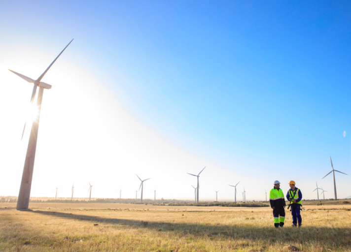 A photo of two engineers discussing on a wind farm