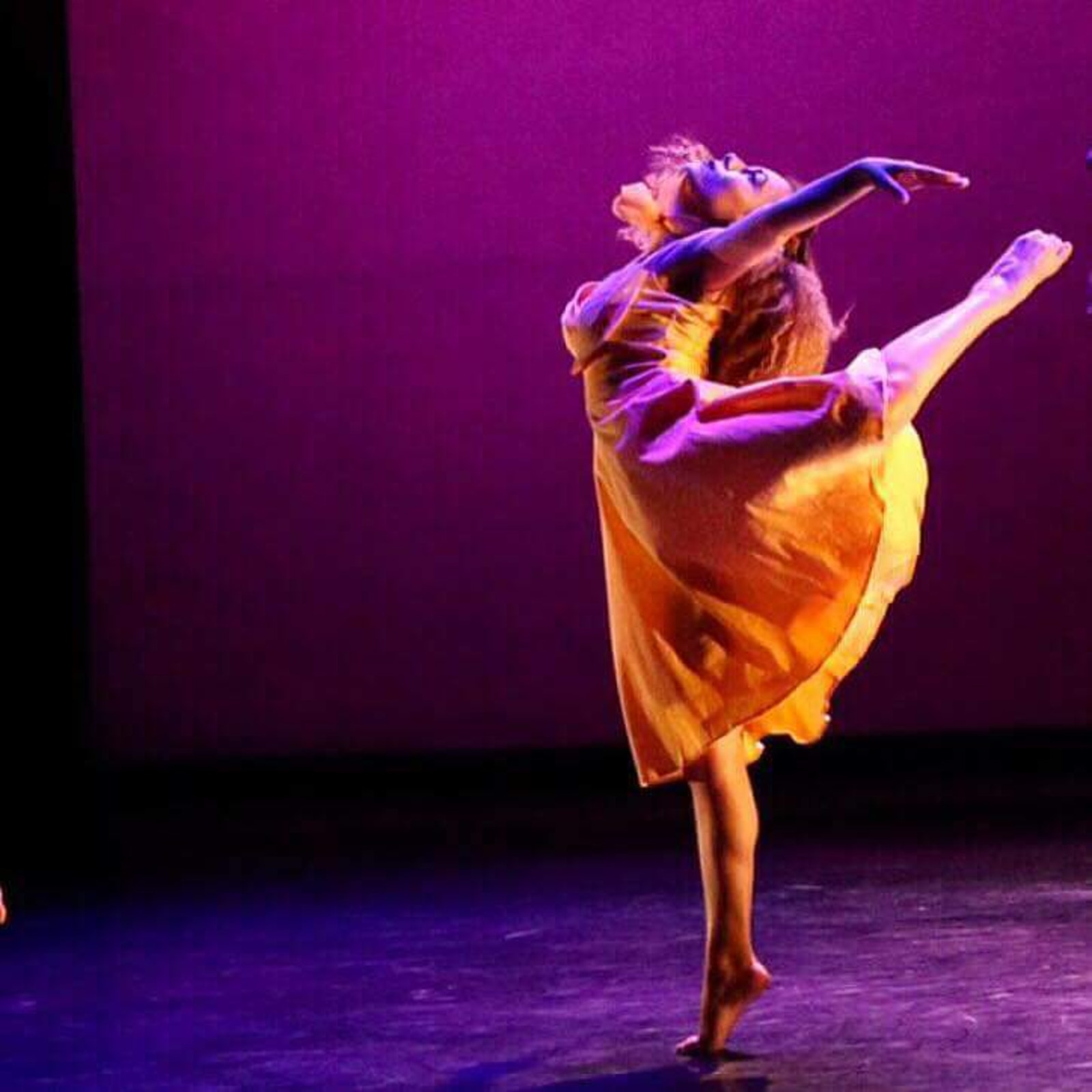 Tropical Image Dance Company