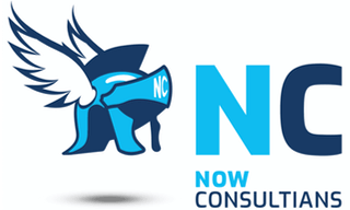 Now Consultians