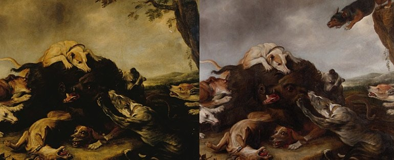 'The boar hunt' before and after treatment