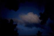 Bill Henson, Untitled 2005/06 2005—2006