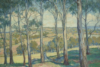 Hilda Rix Nicholas Through the gum trees, Toongabbie c1920. Art Gallery of New South Wales © Estate of Hilda Rix Nicholas