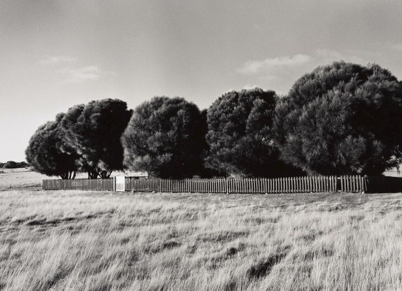 Ricky Maynard, The Healing Garden, Wybalenna, Flinders Island, Tasmania, from the series Portrait of a distant land, 2005, Art Gallery of New South Wales © Ricky Maynard. Licensed by Copyright Agency