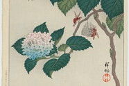 Ohara Shoson 'Hydrangeas and wasps' 1929