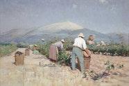 Frédéric Montenard Vintage harvest in Provence 1890