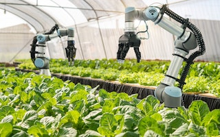 The Food and Beverage industry is actively undergoing collective change.With the industry facing its biggest challenges yet, new food startups are working on disruptive concepts to make nutrition more resourceful, efficient, and sustainable.