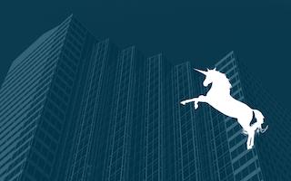 Breeding Corporate Unicorns