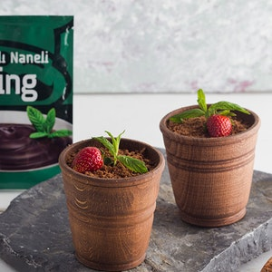 Saksıda Çikolatalı ve Naneli Puding Tarifi