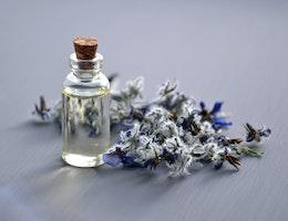 ouvrir parfumerie