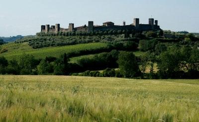 Siena, San Gimignano - gruppo Prestige service acacia firenze
