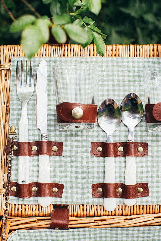 1480097182 picnic