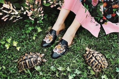 Apre il Gucci Garden al posto del Museo Gucci blog acacia firenze