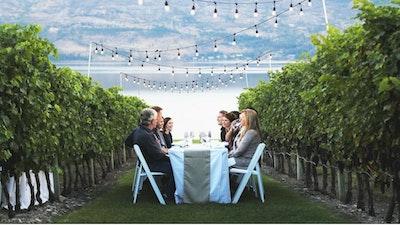 Toscana e vino. Ecco una breve guida per scegliere il tour o la degustazione perfetta per voi blog acacia firenze