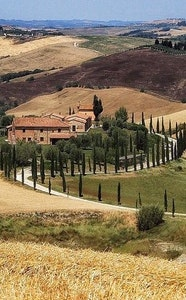 One Day in Chianti with e-bike and wine tasting experience service acacia firenze