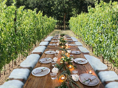 Wine Tasting and dinner in the vineyards service acacia firenze