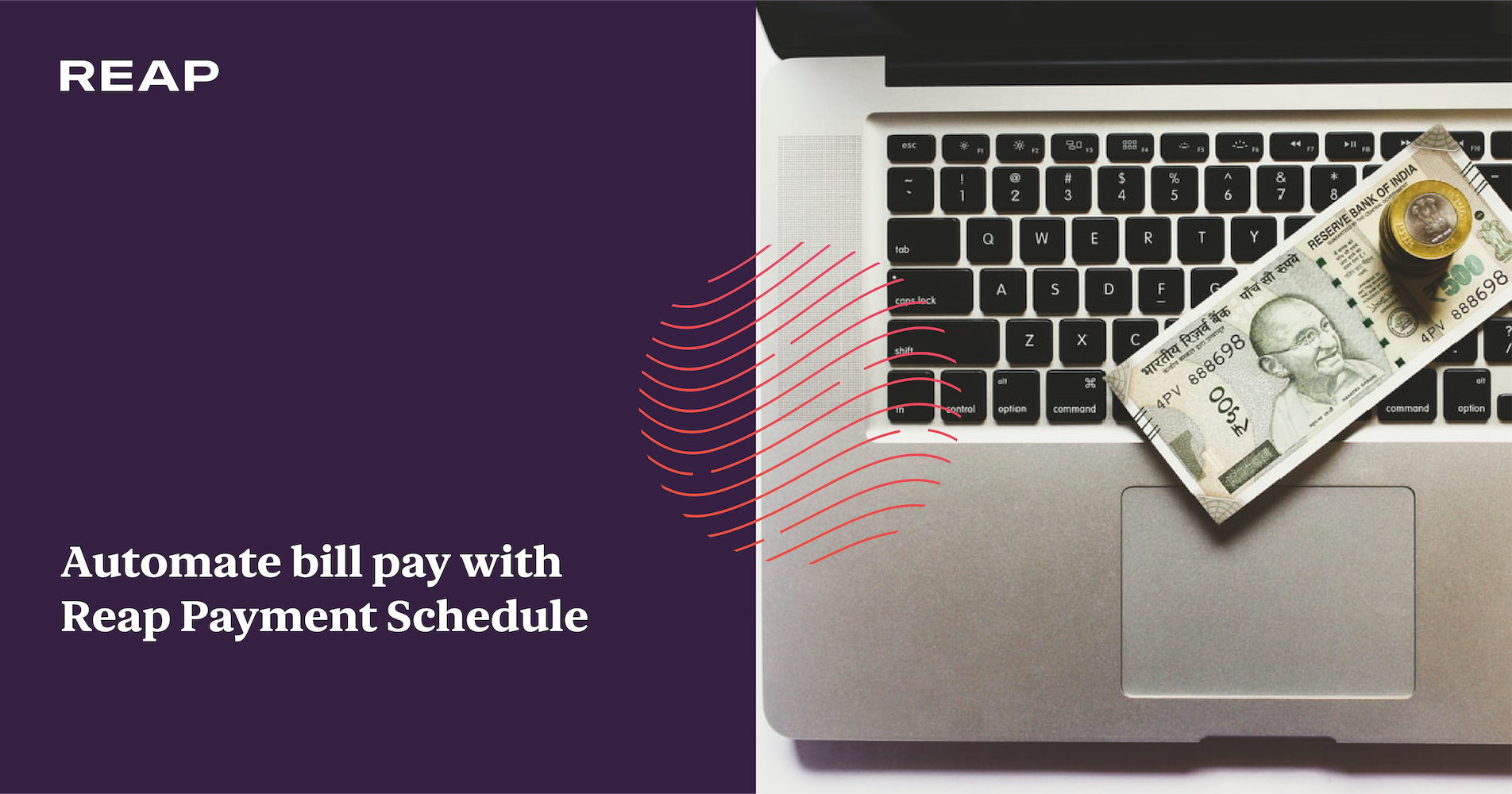Cover Image for Automate bill pay with Reap Payment Schedule
