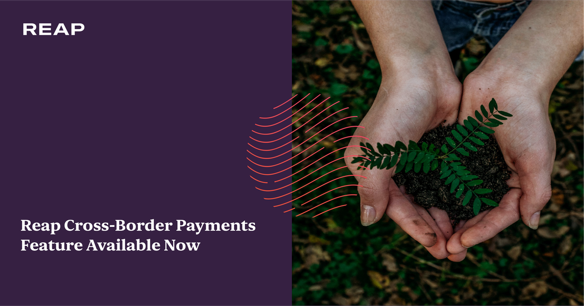 Cover Image for Reap Cross-Border Payments Feature Available Now