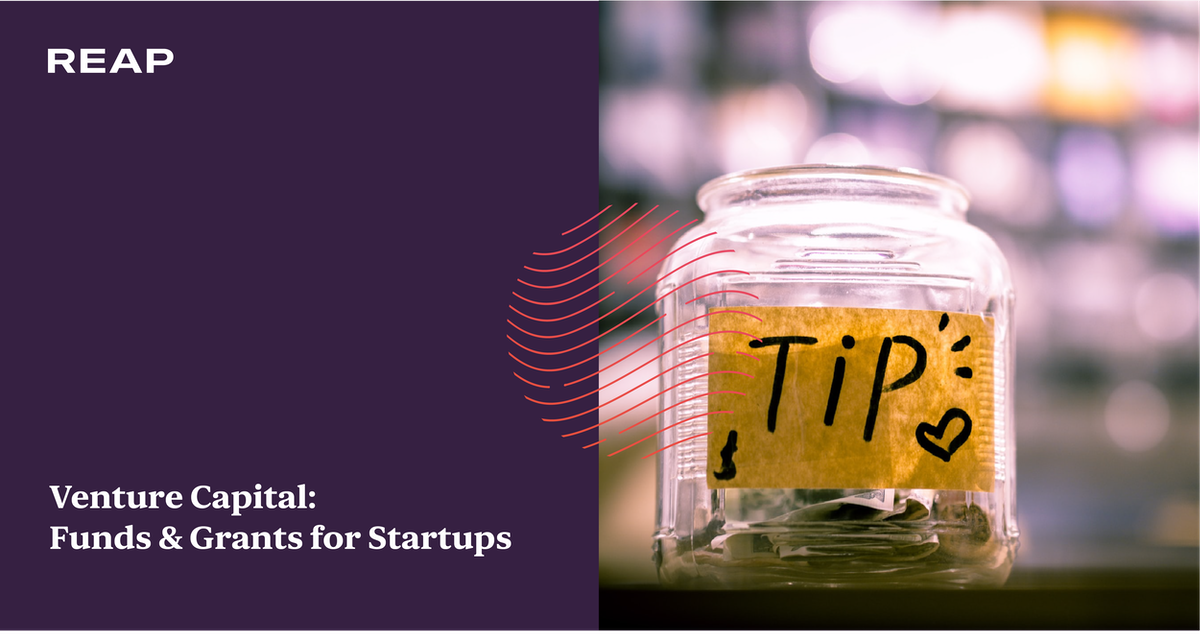 Cover Image for Venture Capital: Funds & Grants for Startups