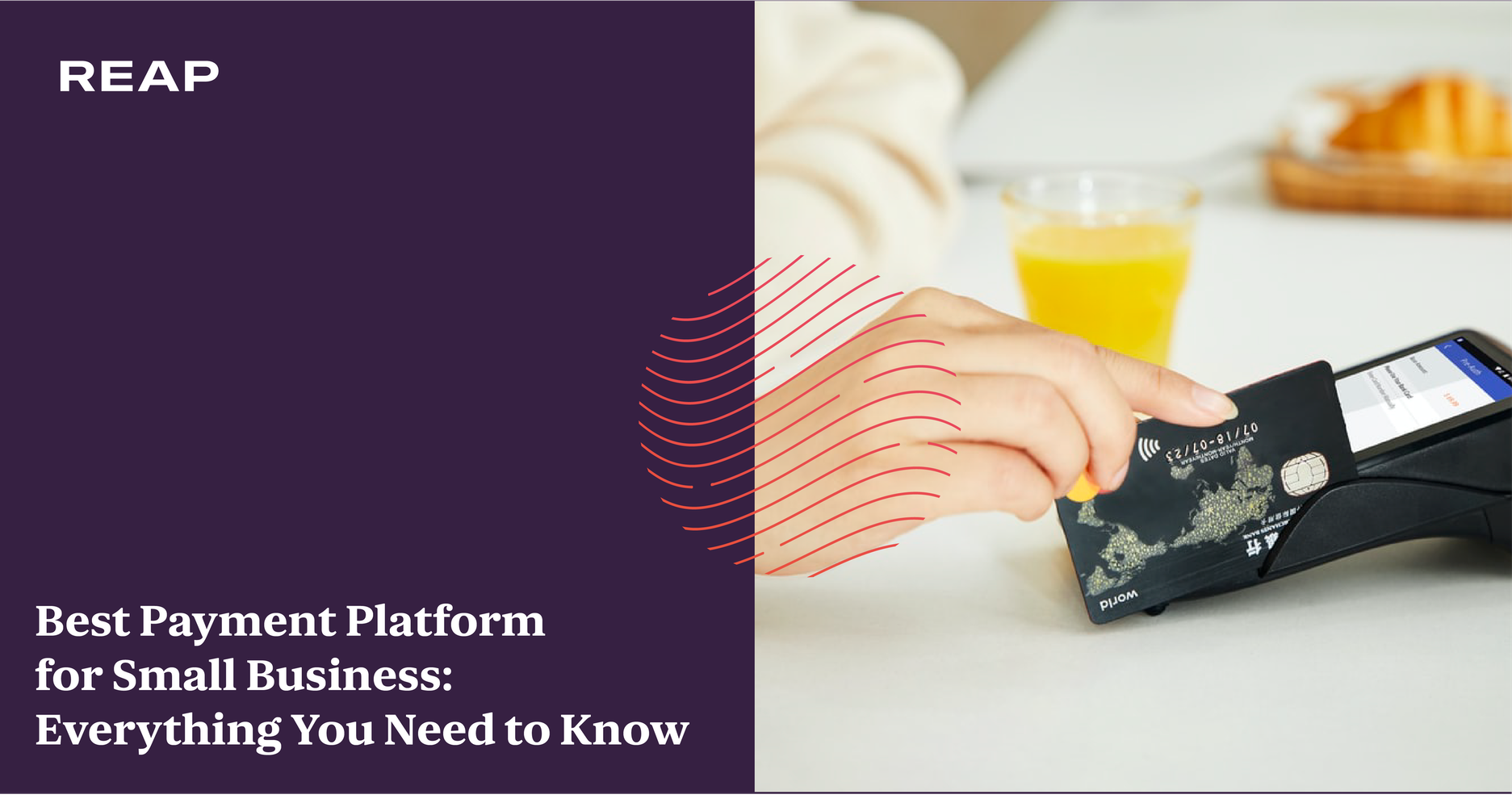 Cover Image for Best Payment Platform for Small Business: Everything You Need to Know