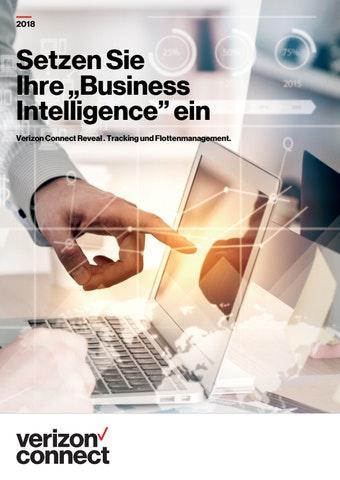 1554817268 debrochurerevealbusinessintelligence