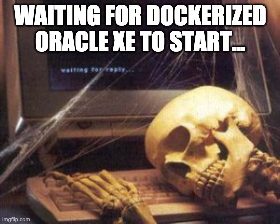 waiting for dockerized oracle xe to start