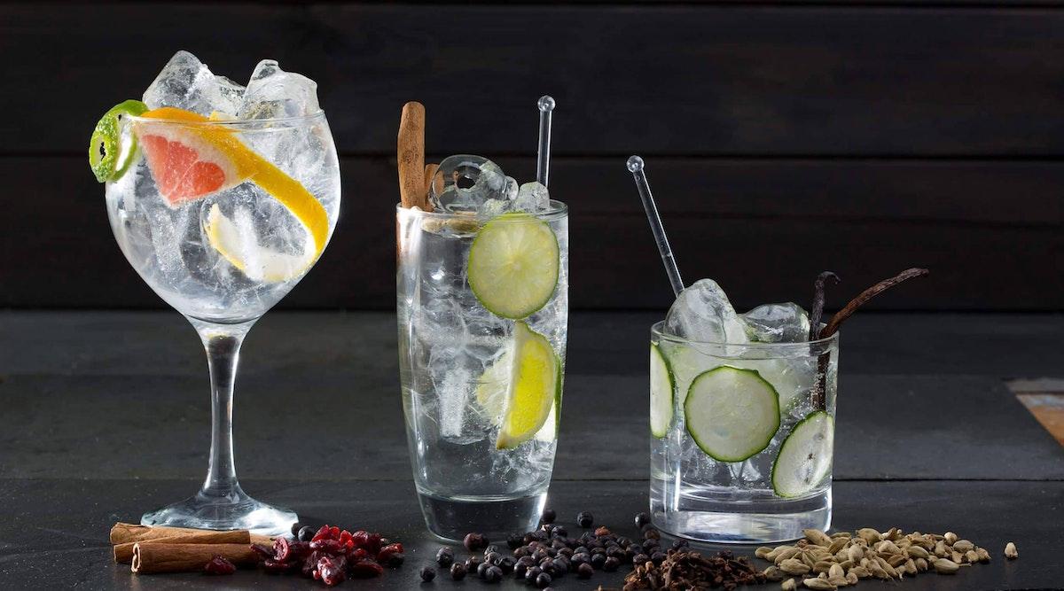 Leckere Gin Tonic Sorten