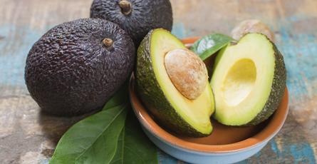 Eine Frucht, die es in sich hat: Avocado