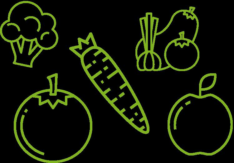 Traditioneller Obst- und Gemüseanbau in Brandenburg