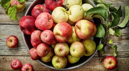 Apfelsorten: diese Vorteile haben Boskoop & Co.