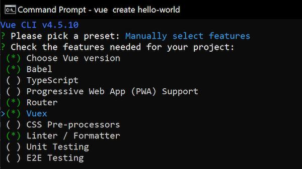 VueJS Configuration