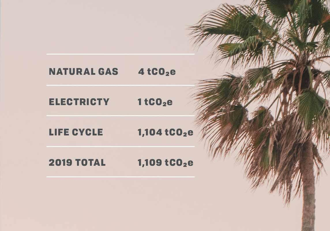 Our carbon footprint from 2019 was 1109 tCO2e