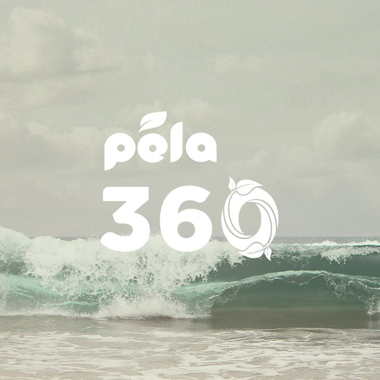 Pela 360 takeback program