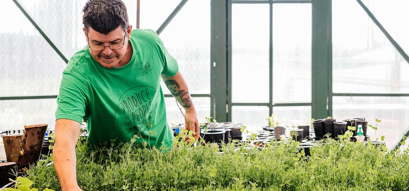 Man tending to his hot house garden