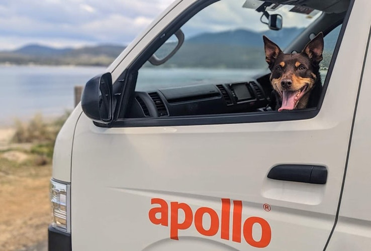 Dog sitting in the passenger seat of a campervan with the window down
