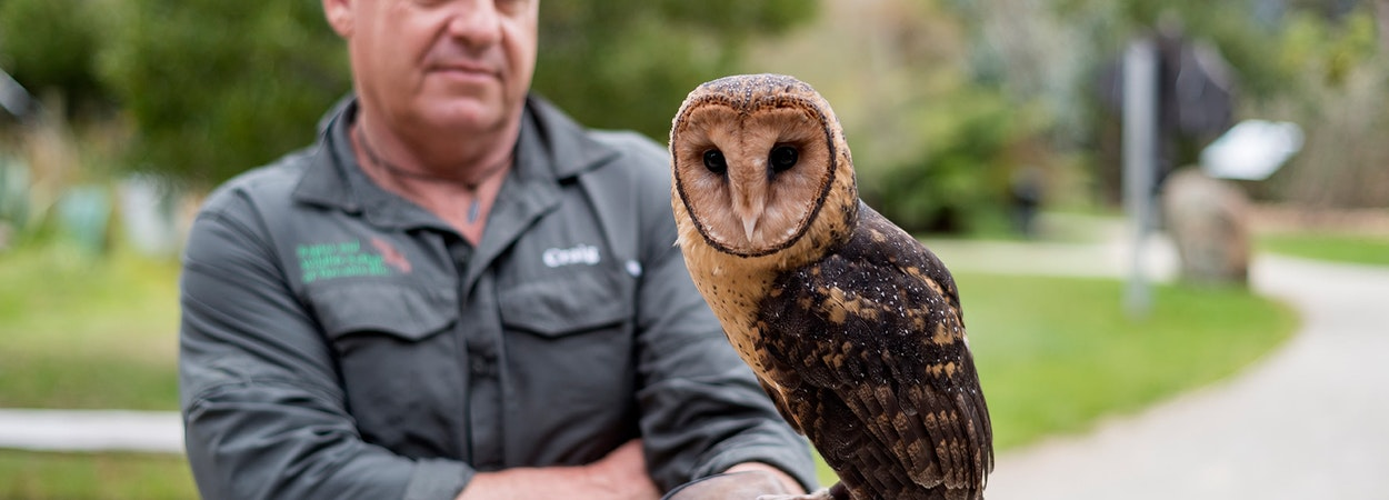 Person with owl.