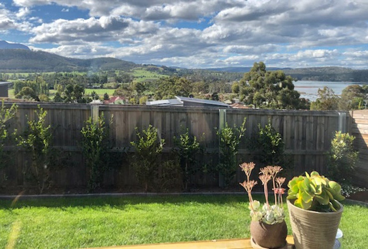 Backyard view of tree-topped rolling green hills