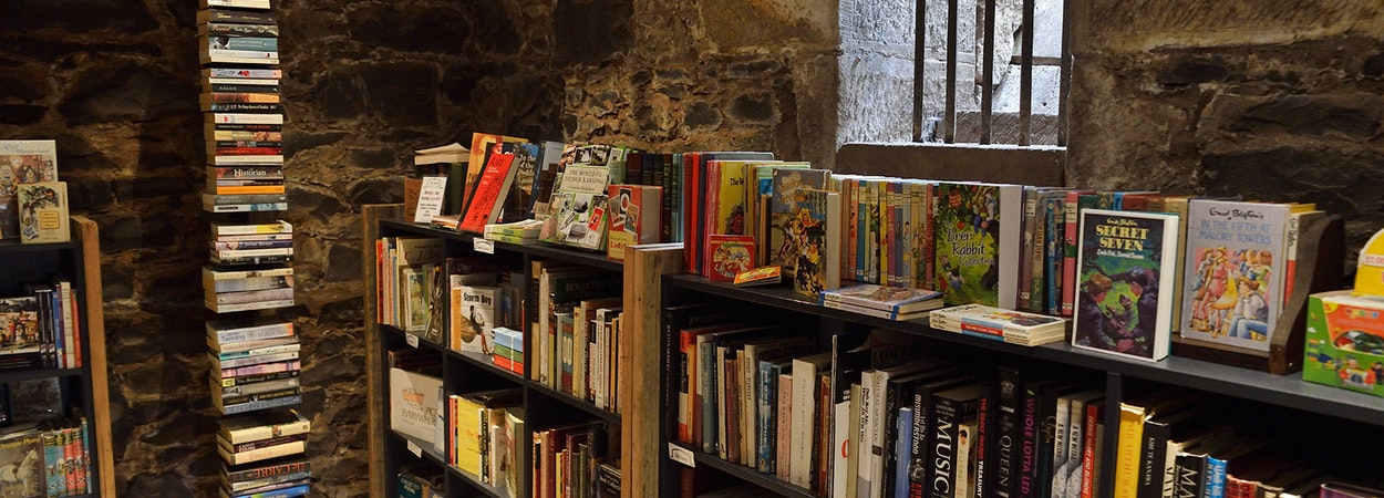 A variety of books lining the historic walls of The Book Cellar.