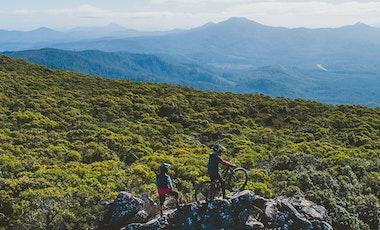 Mountain bikers on mountain