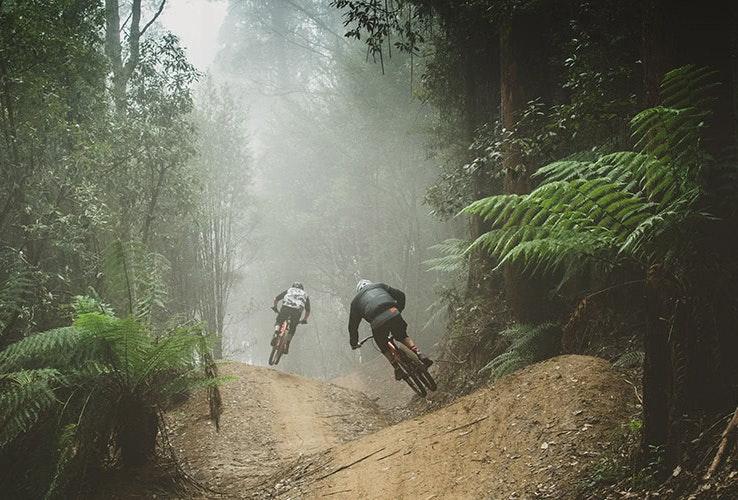 Mountain biking in Maydena
