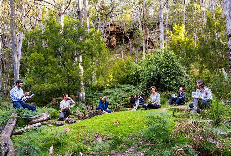 Group sitting on green grass in forest