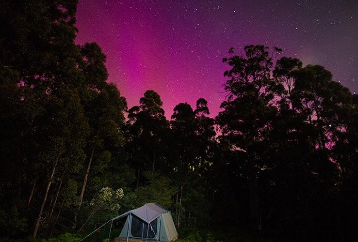 Campers under night sky.